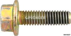 Bundschraube M6x20 DIN6901 BN2846 Gold zu 60416530 für z.B 60416565 Lehre