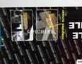 Bremssattel-Feile schmale Ausführung (10 mm)