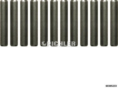 Zylinderstifte VPE 12Stück für Zugkraftbegrenzer 60385229